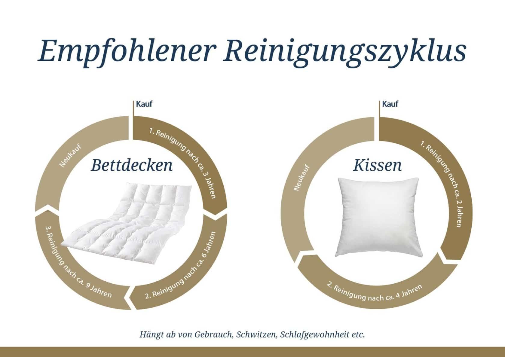 Unsere Bettenreinigung Für Hygienisch Einwandfreie Bettdecken Kissen